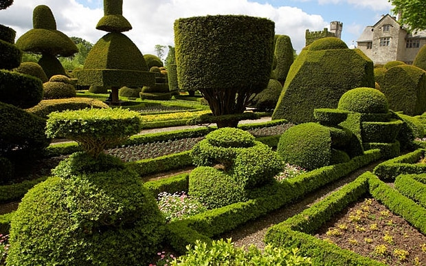 Expert39s Guide To Trimming Topiary And Hedges Telegraph