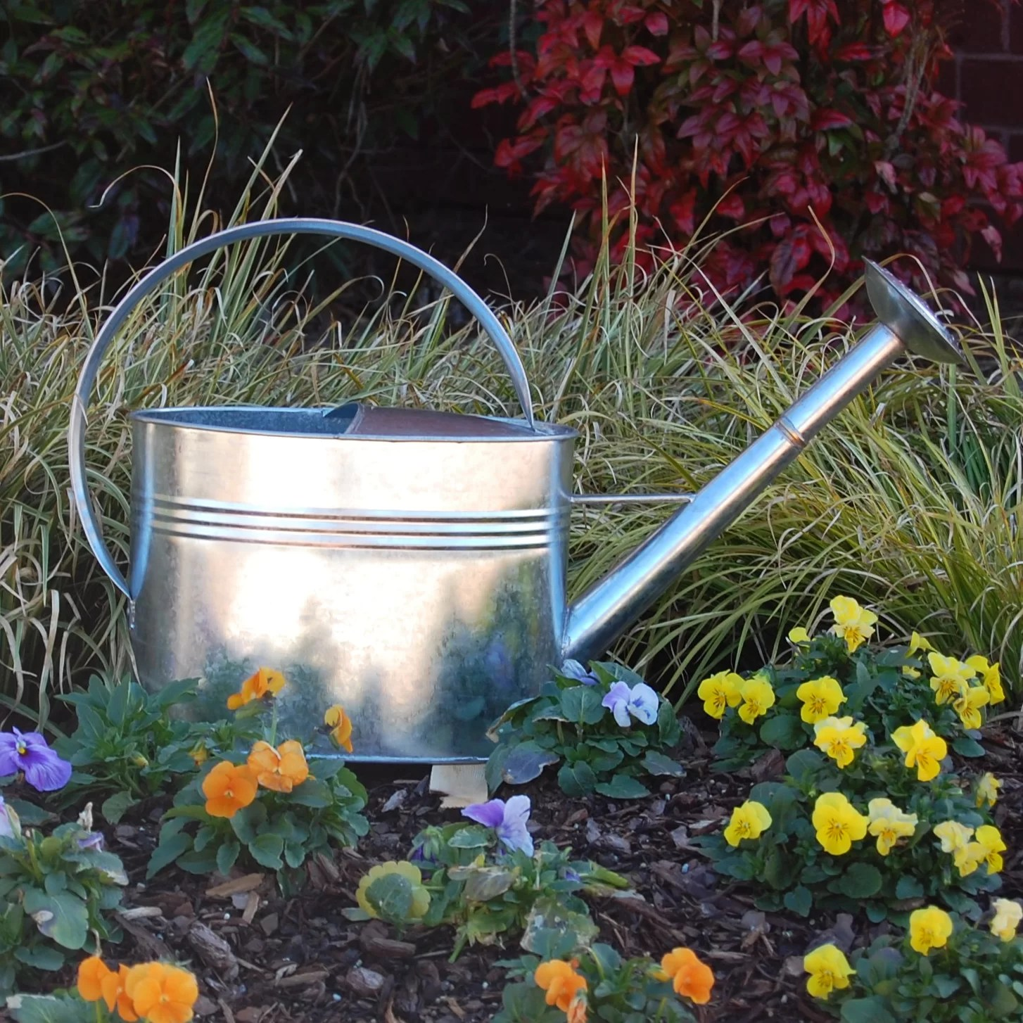Watering Cans With Long Spouts Griffith Creek Designs 1 Gallon Galvanized Watering Can