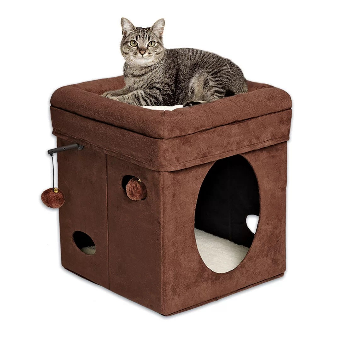 Cat Beds And Furniture Midwest Homes For Pets 16 Quot Feline Nuvo Curious Cat Condo