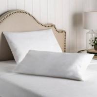 Wayfair Sleep Wayfair Sleep Allergy Protection Pillow ...