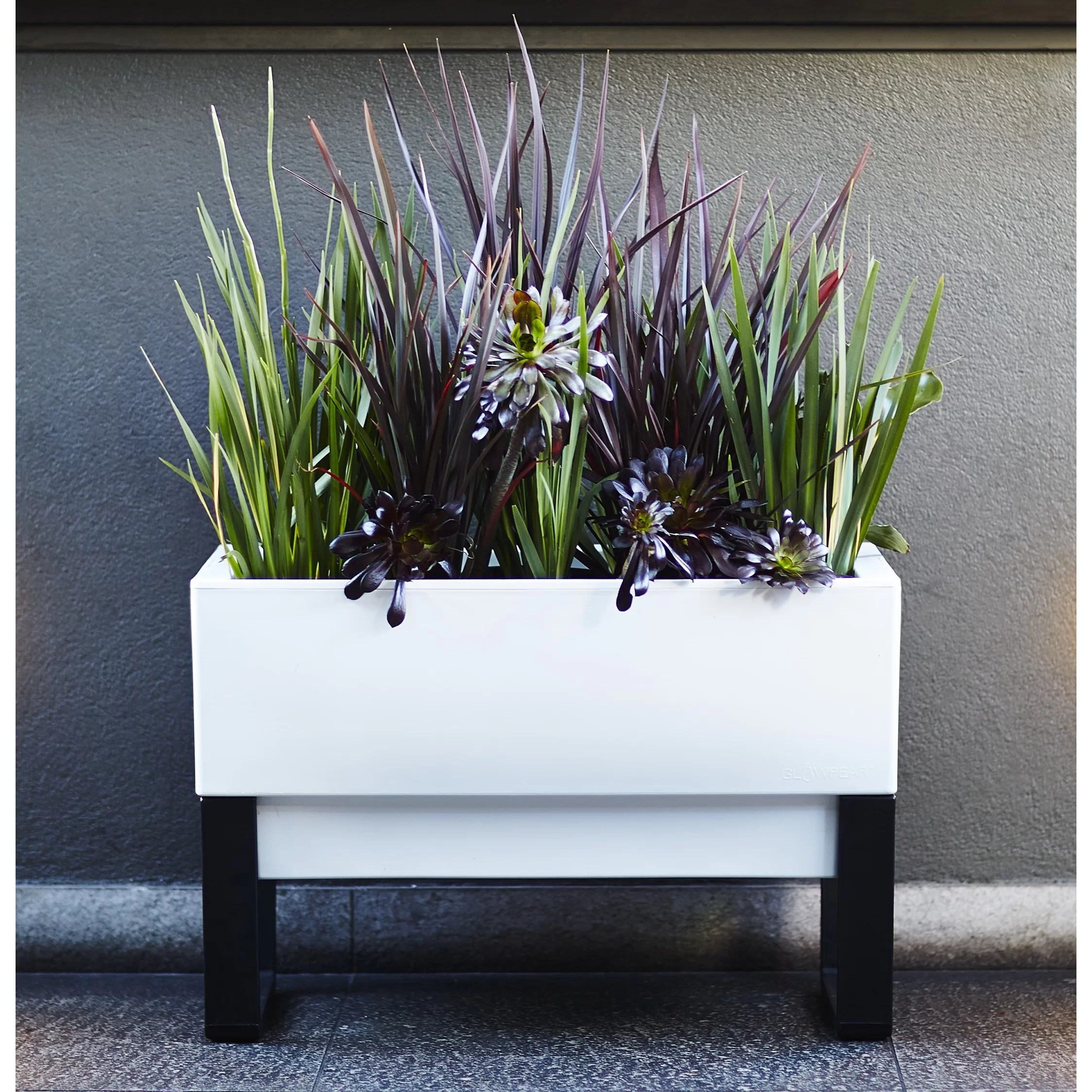 Self Watering Outdoor Planters Glowpear Rectangular Planter Box And Reviews Wayfair