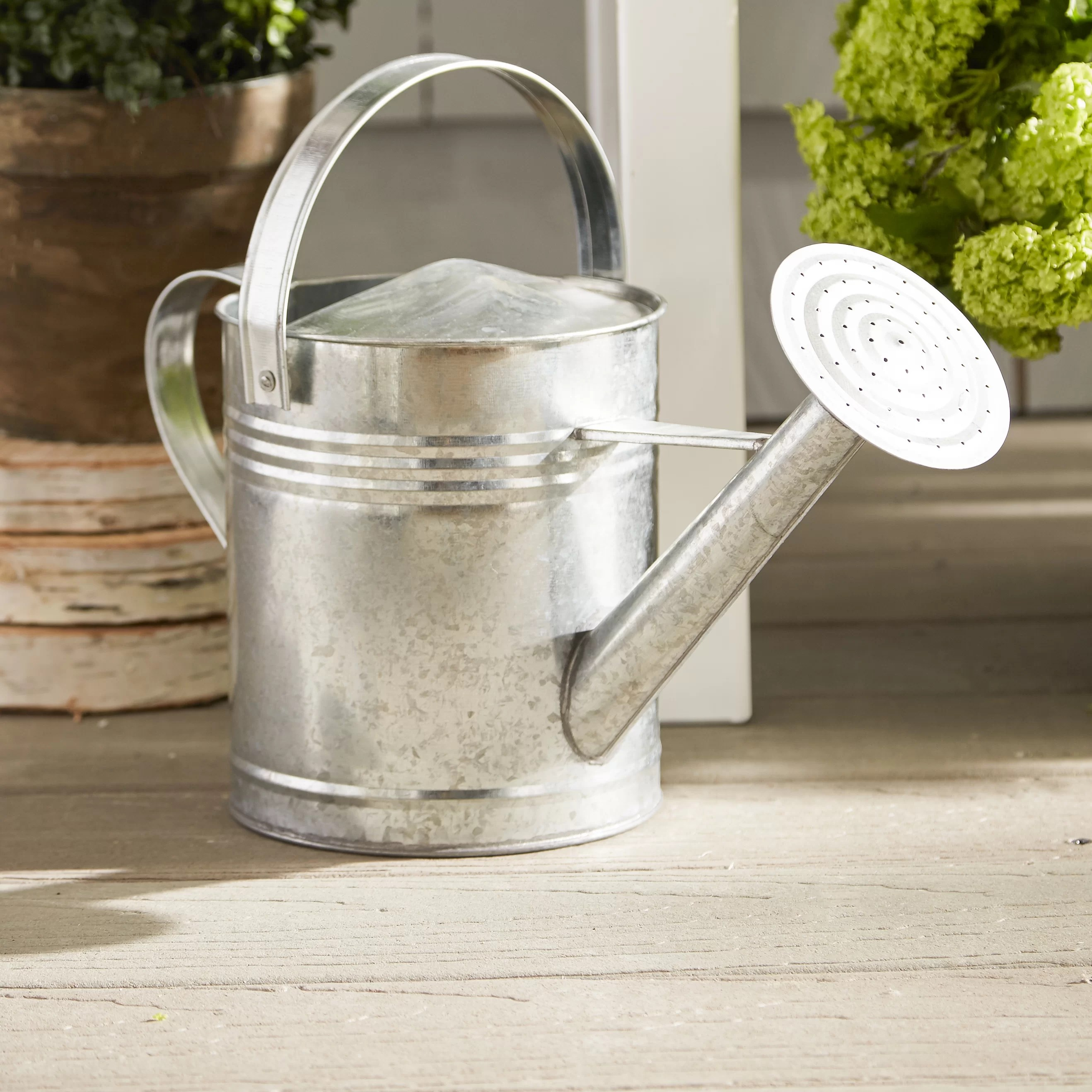 Galvanized Watering Cans August Grove Ethel Galvanized Watering Can And Reviews Wayfair