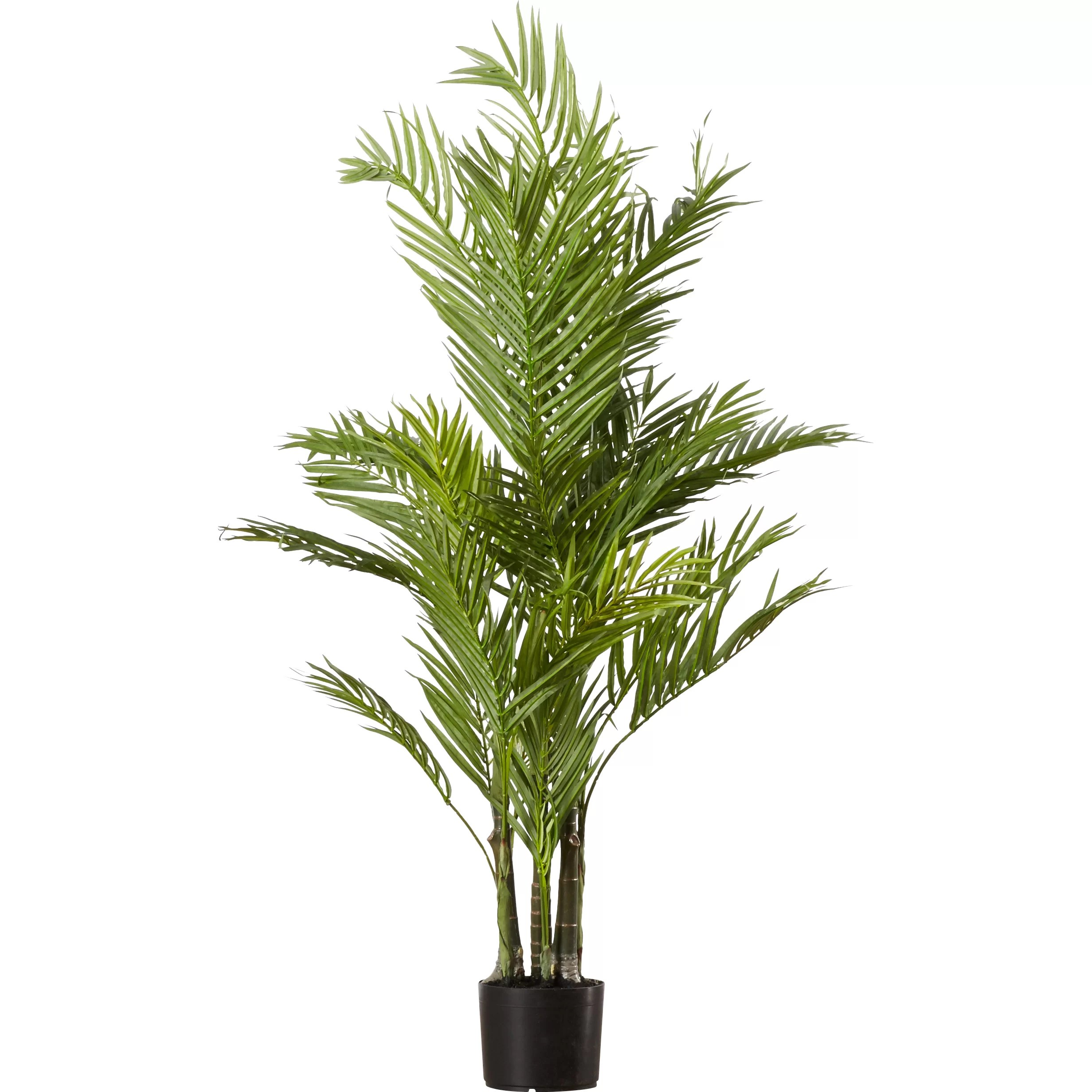 Palm Areca Beachcrest Home Brookings Silk Areca Palm Tree In Pot