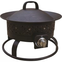 Bond Aurora Steel Gas Outdoor Fireplace & Reviews | Wayfair