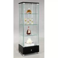 Curio Cabinet | Wayfair