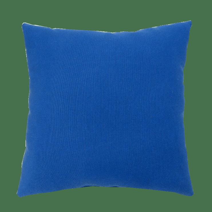 Three Posts Erie Indoor Outdoor Throw Pillow Reviews