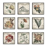 One Allium Way 'French Botanical Illustrations' 9 Piece ...
