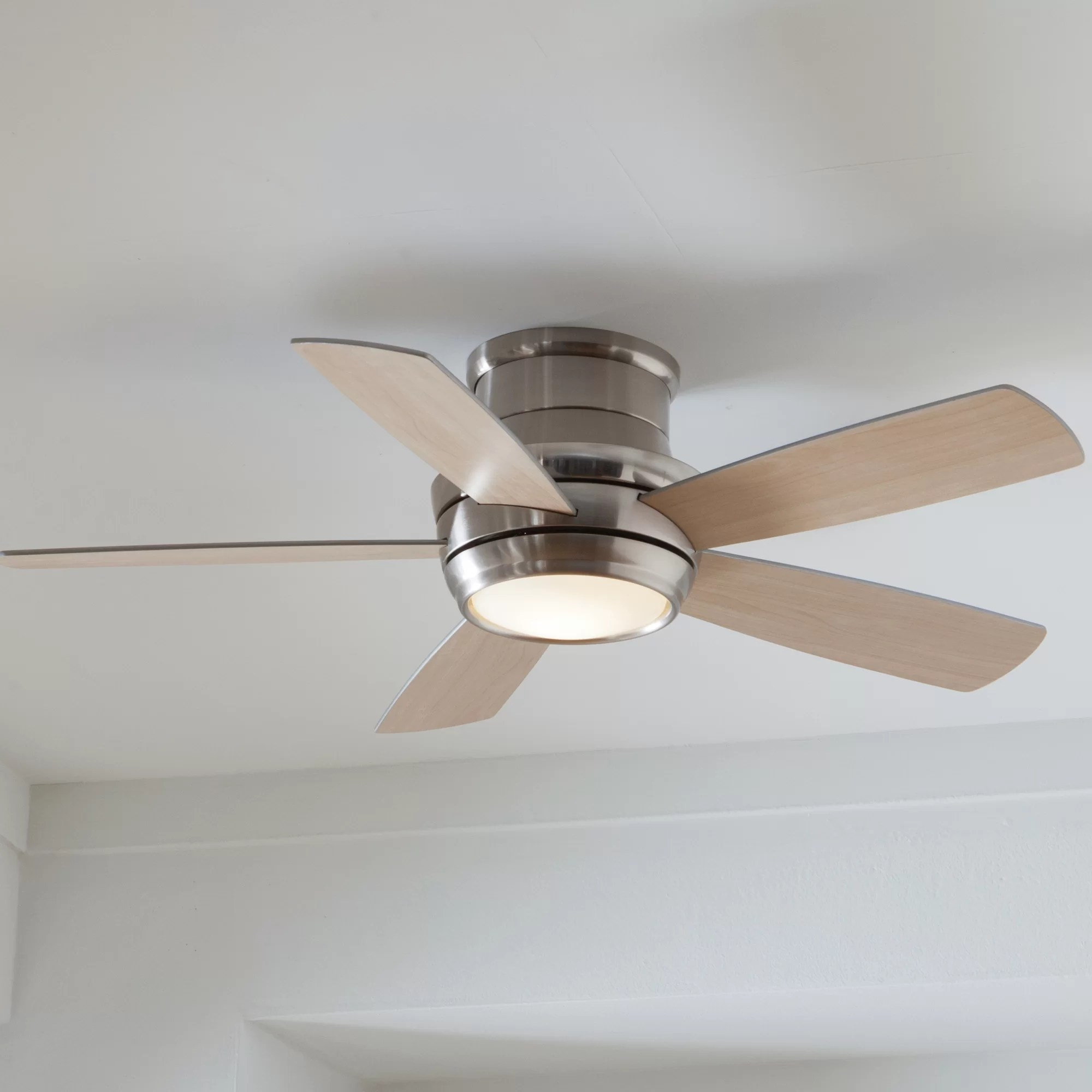 Black And Gold Ceiling Fan Modern Lighting Allmodern