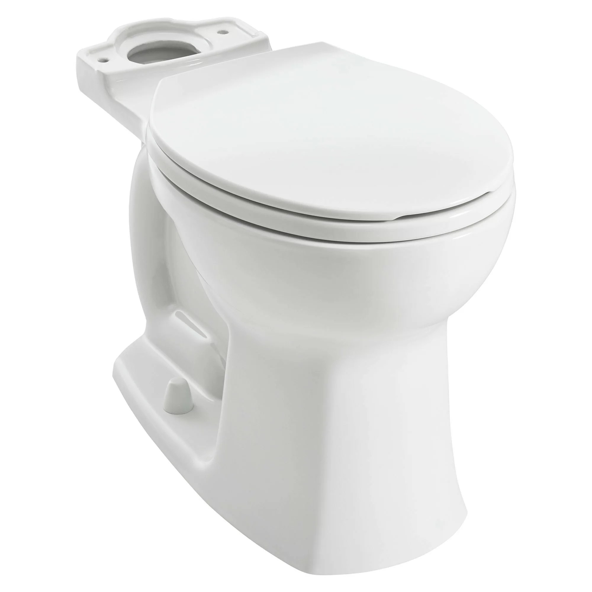 10 Inch Rough In Toilet Canada Edgemere Dual Flush Elongated Toilet Bowl