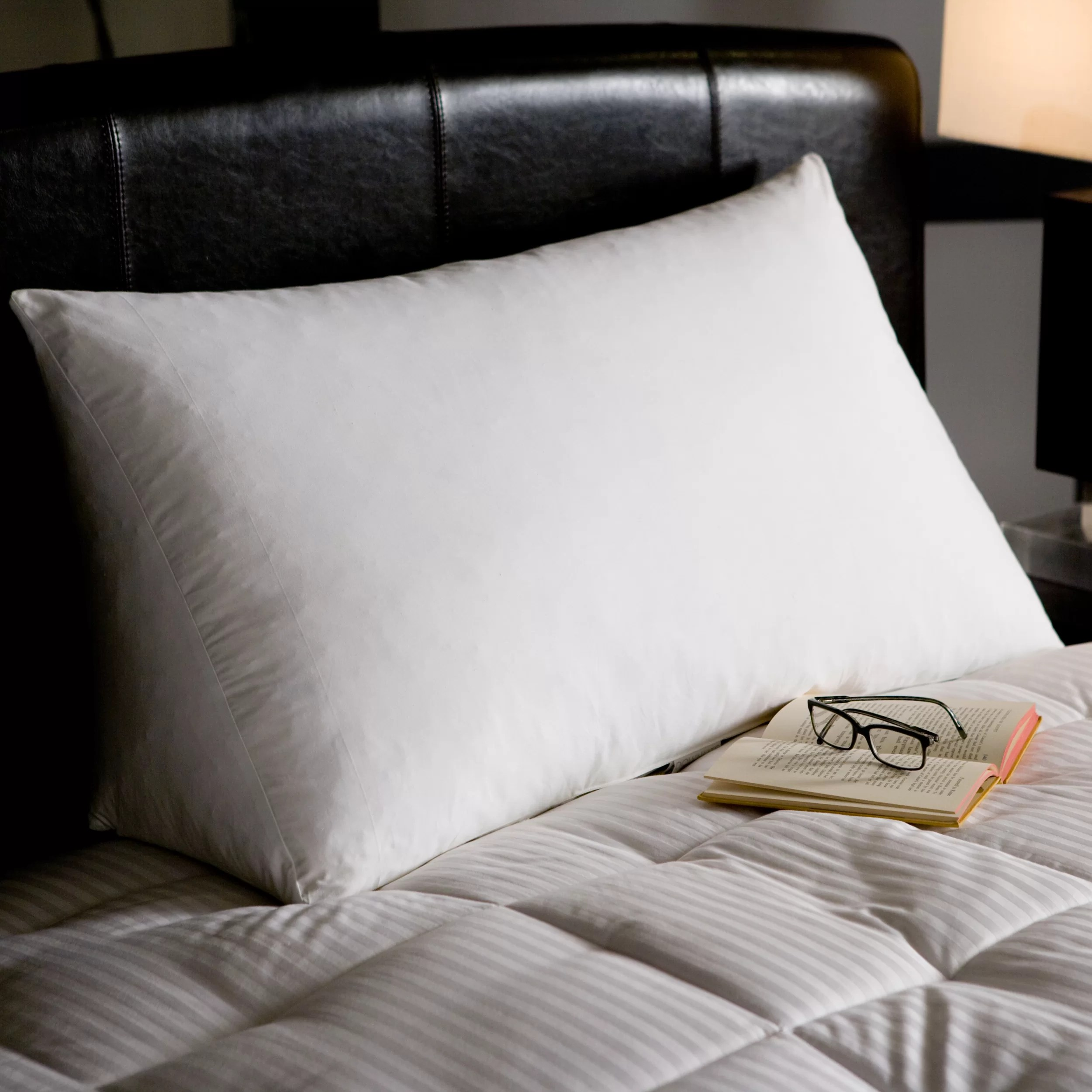 Reading Pillow Bed Reading Wedge Goose Down And Feather King Pillow