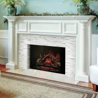 Napoleon Woodland Electric Fireplace Insert | Wayfair