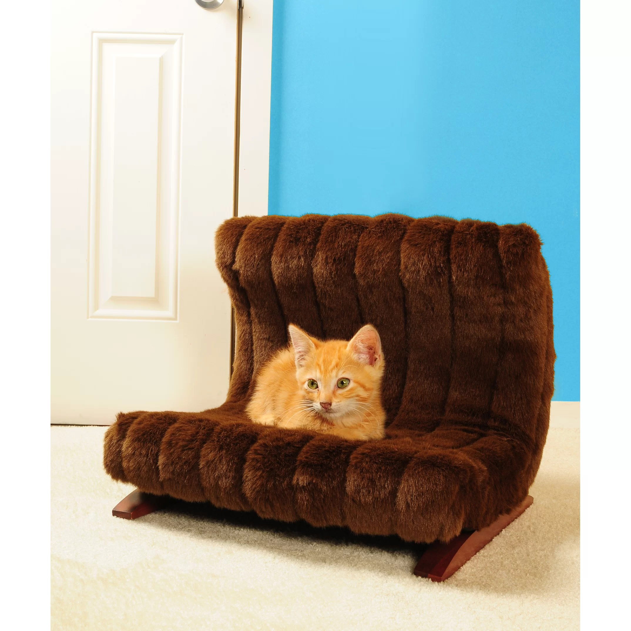 Modern Cat Bed Furniture Keet Modern Pet Bed And Reviews Wayfair