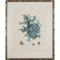 Mirror Image Home Turquoise Coral III Framed Graphic Art ...