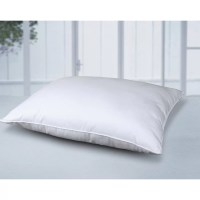 Cotton Loft All Natural Cotton Pillow & Reviews   Wayfair