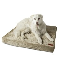 Posh365 Luxury Orthopedic Foam Dog Bed & Reviews | Wayfair