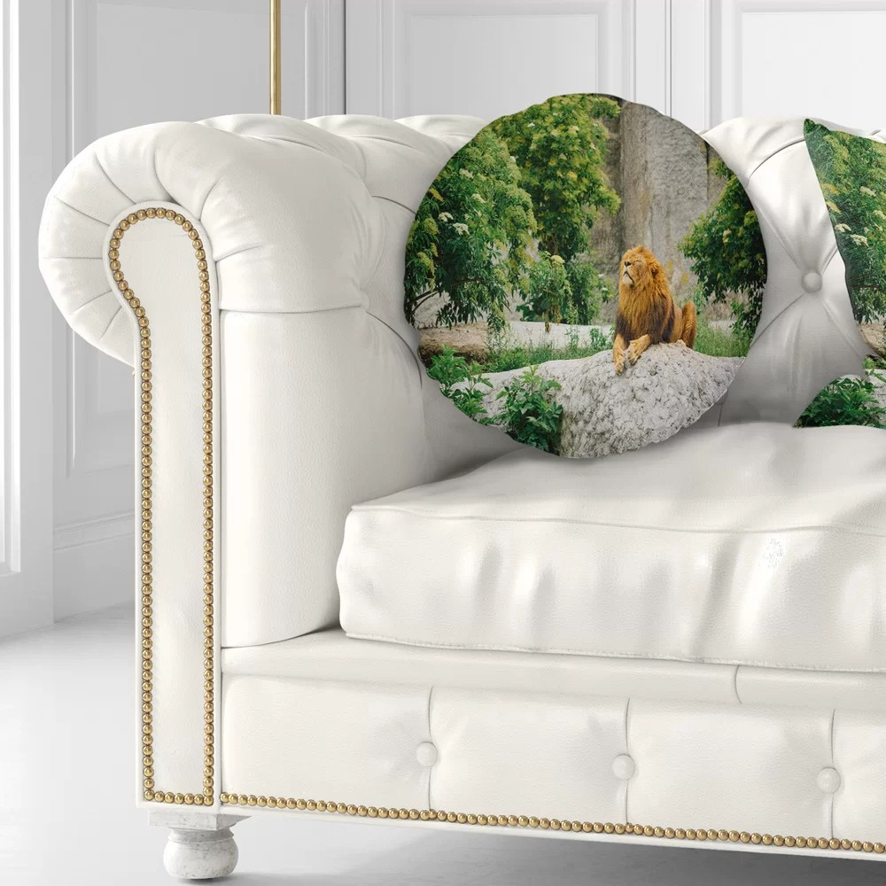 Big Couch Throw Big Lion Lying On Stones Throw Pillow