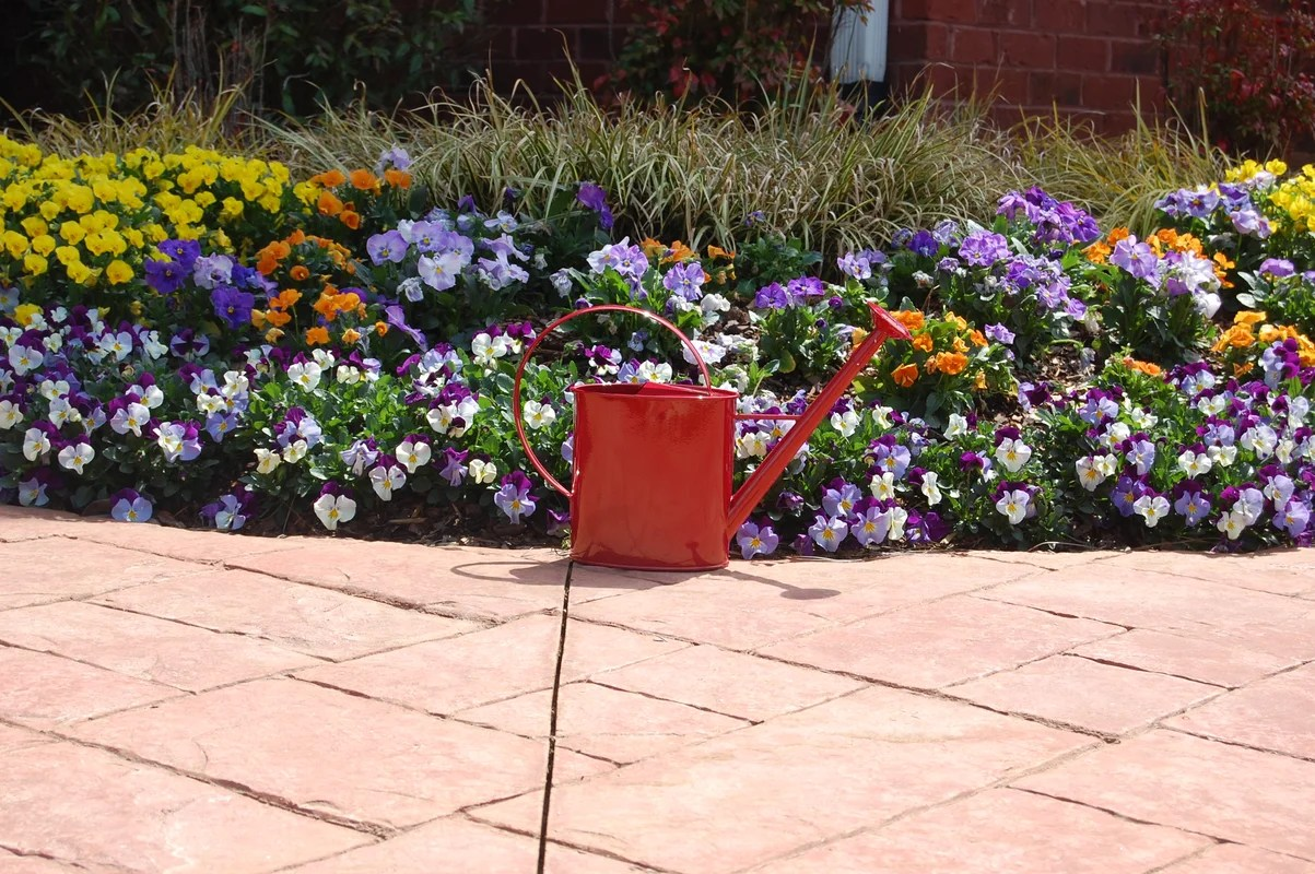 Watering Cans With Long Spouts Griffith Creek Designs Metal 1 Gallon Watering Can With