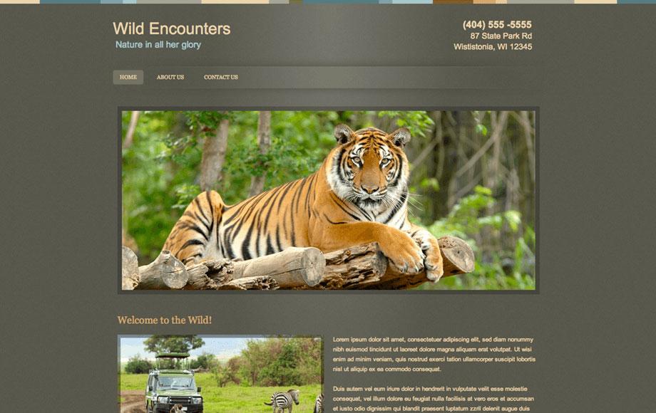Free Website Builder Make a Free Website  Hosting Webs - how to create a website template