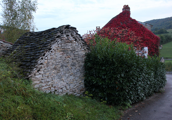 French stone homes covered in leaves