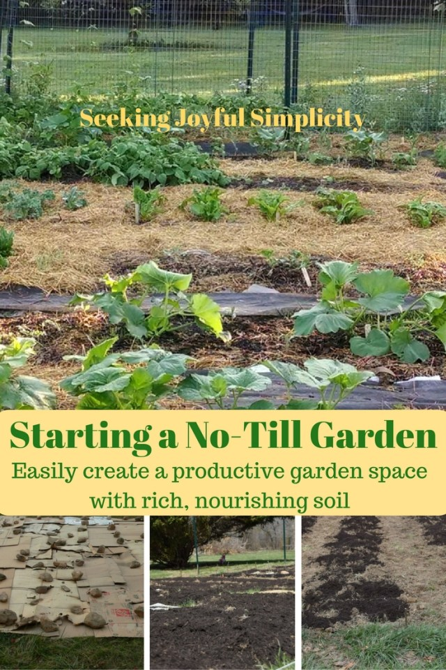 Starting a garden, especially from lawn, can be a challenge. Using the no-till method you can easily create a productive garden with rich, nourishing soil.