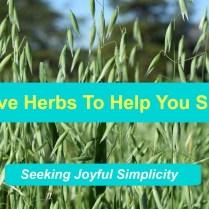 Five Herbs to Help You Sleep - Milky Oats