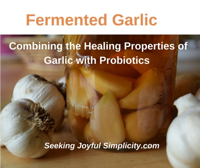I love using food as medicine, and garlic offers simple, yet powerful benefits. Making fermented garlic is really simple and here are five easy and delicious recipes for using your homemade probiotic-rich garlic.