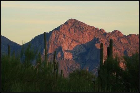 Desert Sunset Catalina