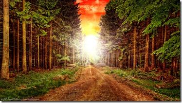 énergie nature