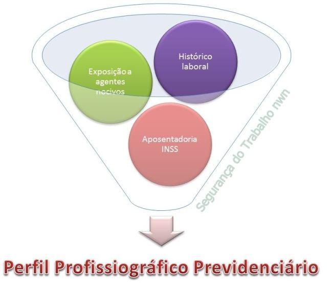 Como preencher o PPP1