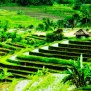 the-bulgari-bali-water-wedding-venue Bali Wedding Venues