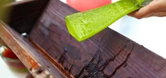 Aruba invita a disfrutar las propiedades del mejor Aloe Vera del mundo