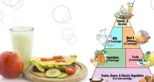 Sehat Alami - Mindless Eating - Jebakan Pola Makan Tidak Sehat
