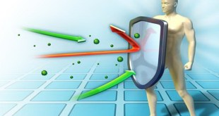 Sehat Allami- Optimalkan organ vital untuk detak-  tingkatkan imunitas tubuh