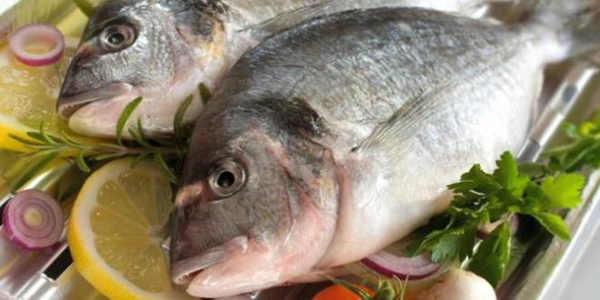 Studi Menyebutkan : Ingin Diet sehat, Makanlah Ikan 2 Kali Seminggu