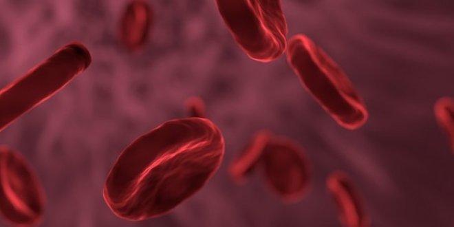 Menjadi Donor Pasien Kanker Darah Ternyata Tidak Harus Punya Hubungan Darah