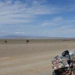 Landschaft Mongolei12
