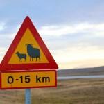 アイスランドの地に、三十路ガールズ集結!