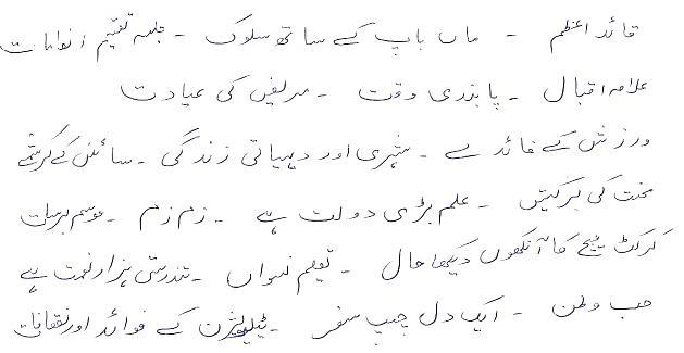 Student essays in urdu Research paper Help slpaperxamd