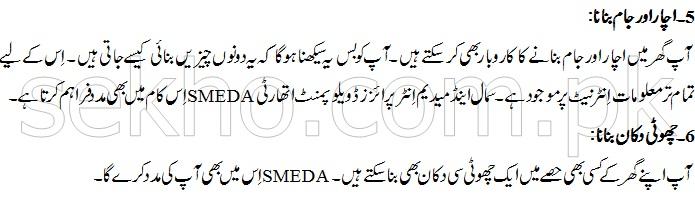 Home Based Business Ideas In Pakistan In Urdu - business ideas from home
