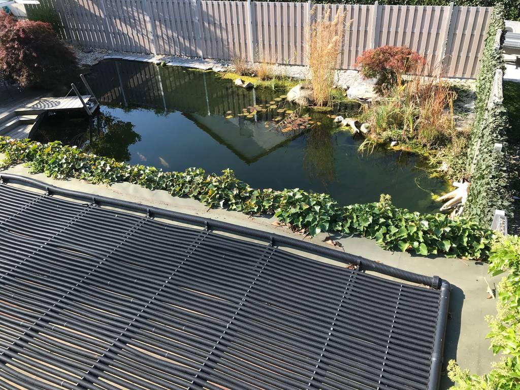 schwimmteich selbstbau | wieso einen swimmingpool bauen wenn man