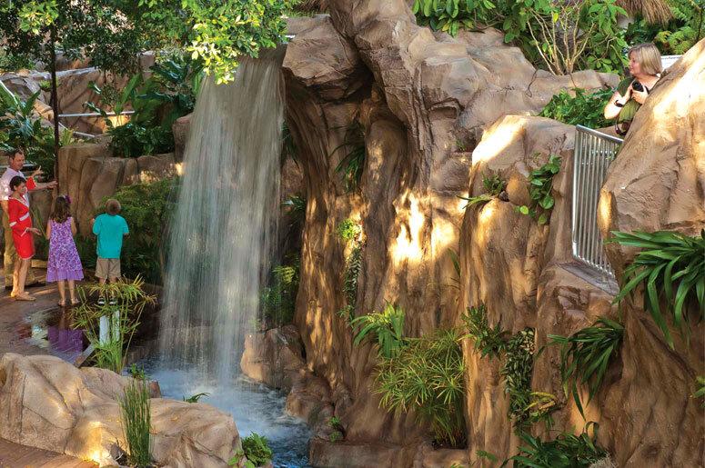 http://i0.wp.com/selby.org/wp-content/uploads/Rainforest-garden-waterfall.jpg?fit=775%2C515