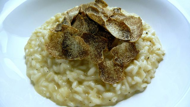 Risotto with white truffles from Alba