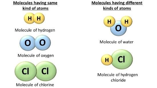 WHAT ARE MOLECULES? - Selftution - molecule vs atom