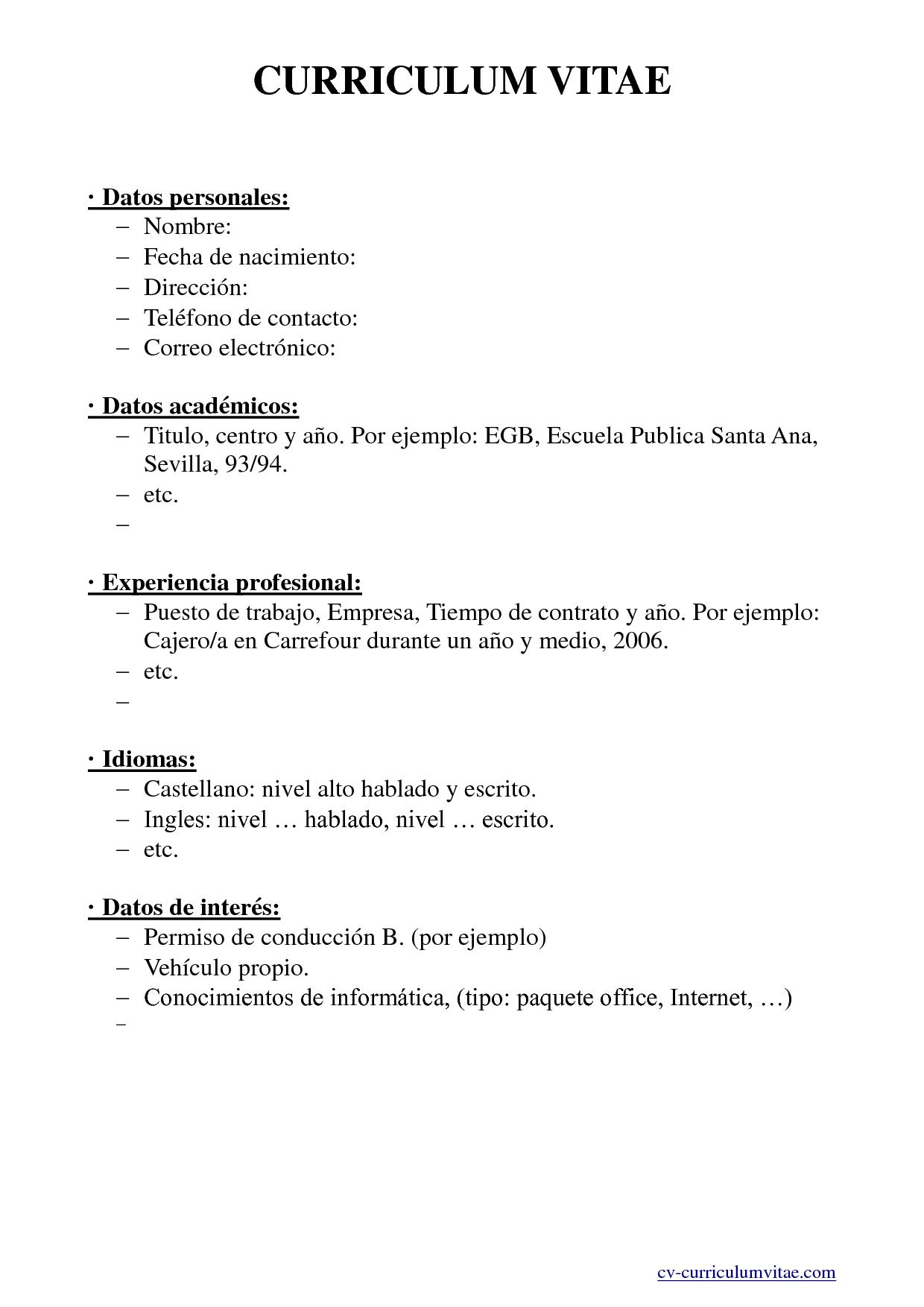 Sample Curriculum Vitae Word Document