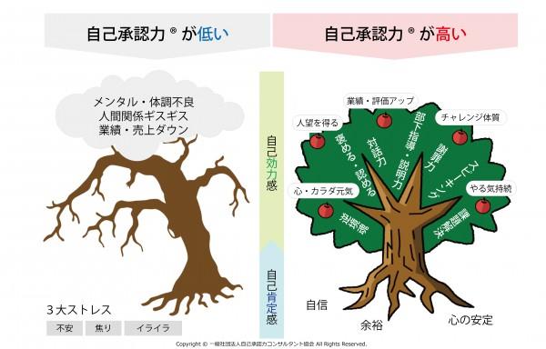 tree_%e4%bf%ae%e6%ad%a37%e5%a4%a7_20160803