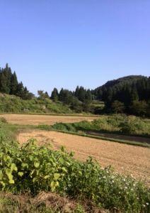 田麦山写真・風景2