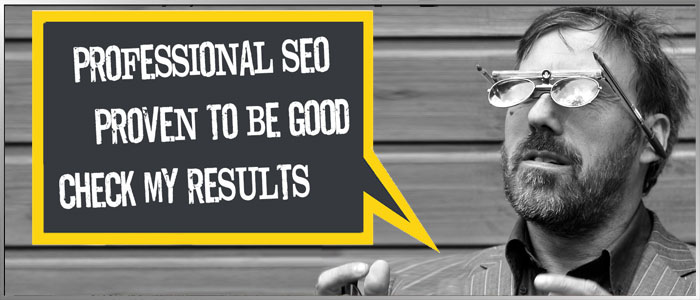 SEO Search Engine Optimisation The Netherlands Holland ShanTVision