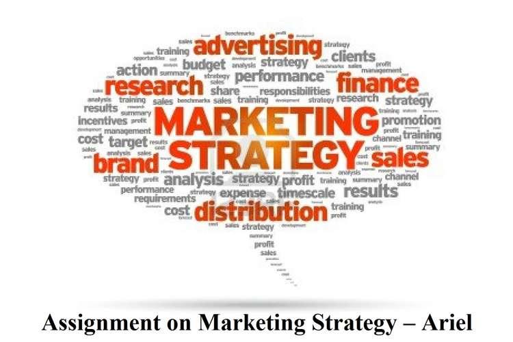 Assignment on Marketing Strategy \u2013 Ariel Assignment Help