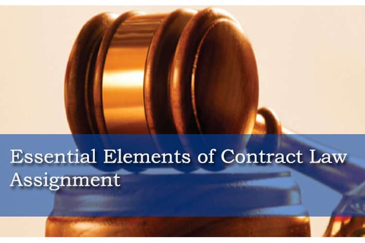 Essential Elements of Contract Law Assignment Locus Help