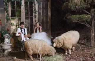 20120914_seoulbeats_tara_hyomin_fu_xin_bo_wedding
